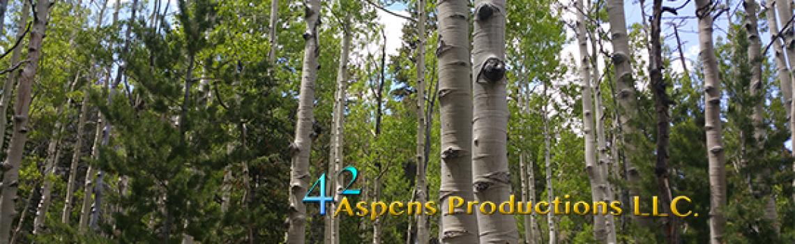 42 Aspens Productions, Hello World