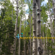 42 Aspens Productions, Hello World