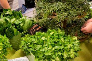 Cilantro at Farmers Market