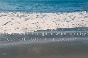 6 days…where to go in wine country?